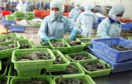 Đề nghị Australia xem xét lệnh cấm nhập khẩu tôm Việt Nam