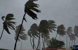 Siêu bão Irma mạnh lên cấp 5