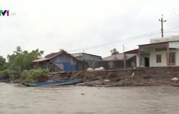 Thiếu vốn đầu tư công trình ứng phó sạt lở tại Cà Mau
