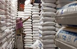 Việt Nam nhập khẩu hơn 400.000 tấn gạo từ Campuchia trong năm 2016