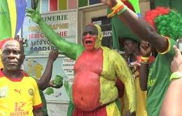 Các CĐV của Cameroon tiếp sức cho đội tuyển quốc gia tại AFCON 2017