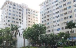 Đề xuất xây căn hộ 25m2: Bộ gật - Thành phố lắc