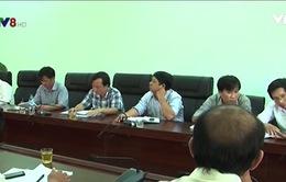 Hàng loạt sai phạm trong bổ nhiệm cán bộ ở Tây Trà, Quảng Ngãi