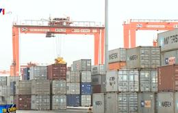 Các Hiệp hội DN tiếp tục kiến nghị tạm dừng thu phí ở cảng Hải Phòng
