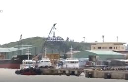 Bình Định yêu cầu khai thông luồng cảng giải phóng gỗ dồn ứ