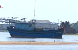 Phú Yên nỗ lực nạo vét luồng, giải phóng cảng cá 53 tỷ đồng