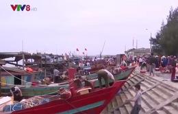 Kinh tế biển Hà Tĩnh khởi sắc trở lại