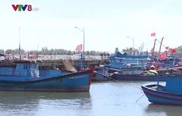 Nỗi lo thiếu nơi neo đậu của ngư dân Quảng Ngãi