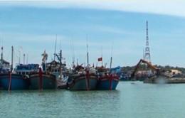 Dự án khu neo đậu trú bão tại Ninh Thuận chậm tiến độ do thiếu vốn