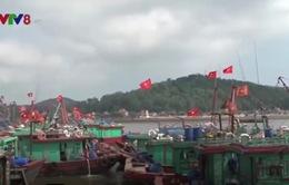 Gia tăng tình trạng neo đậu tàu cá trái phép tại cảng Cửa Lò
