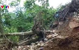 Cao Bằng: Tái diễn tình trạng khai thác quặng trái phép trong rừng đặc dụng