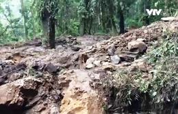Hệ lụy từ nạn khai thác quặng lậu tàn phá rừng đặc dụng