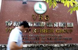 Khởi tố nguyên lãnh đạo Tập đoàn Công nghiệp Cao su Việt Nam