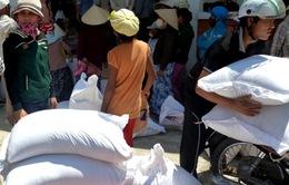 Cấp phát trên 9.000 tấn gạo cứu trợ cho 13 tỉnh chịu hạn hán