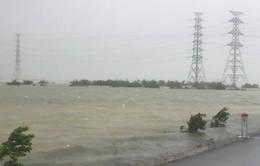 Cột phát sóng truyền hình thị xã Kỳ Anh (Hà Tĩnh) bị đổ sập vì bão số 10