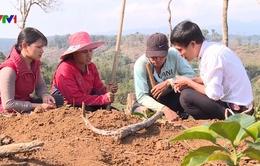 Dự án 600 Phó Chủ tịch xã tại Kon Tum: Những kết quả tích cực