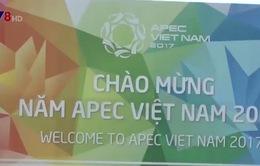 Đà Nẵng tăng cường kiểm tra vệ sinh môi trường chuẩn bị phục vụ APEC