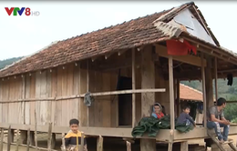 Quảng Ngãi khẩn cấp tái định cư cho người dân vùng sạt lở