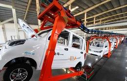 Trung Quốc cân nhắc cấp mới giấy phép sản xuất ô tô điện