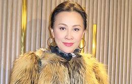 Lưu Gia Linh muốn thuê Lương Triều Vỹ đóng phim