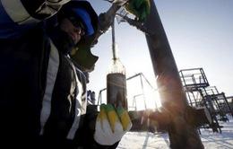 Giám sát thỏa thuận giảm sản lượng dầu
