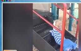 Hàng trăm nghìn lượt chia sẻ video cậu bé không tay chân chinh phục cầu trượt