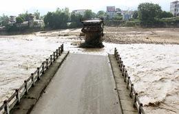 Cầu Ngòi Thia sập khiến 8 người chết, mất tích là do thiên tai