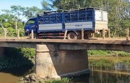 Quảng Trị: Mất an toàn trên những cây cầu cũ xây hơn 40 năm