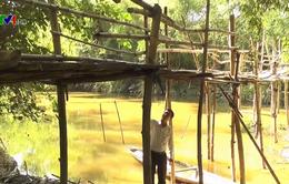 Hiểm họa từ những cây cầu xuống cấp ở Quảng Trị