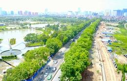 Thành phố Hà Nội sẽ tiếp tục lấy ý kiến về phương án giải tỏa 1.300 cây xanh trên đường Phạm Văn Đồng