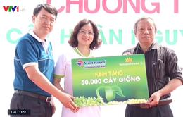 Trồng 50.000 cây keo gai cải tạo môi trường ở Quảng Ninh