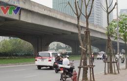 Thiếu không gian xanh tại đô thị