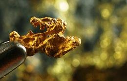 90% vàng trên thế giới không đủ tiêu chuẩn khai thác