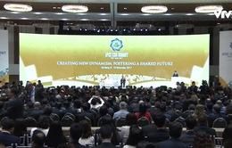 CEO Summit: Thảo luận về hành lang pháp lý cho các dịch vụ, công cụ thanh toán kỹ thuật số
