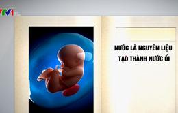 Cách chăm sóc thai nhi khỏe mạnh trong suốt thai kỳ