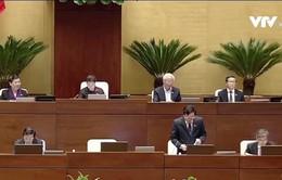 """Có hay không việc tòa không cho bị cáo Châu Thị Thu Nga khai """"chạy"""" vào Quốc hội?"""