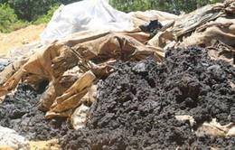 Phạt trên 1 tỷ đồng vì chôn lấp chất thải nguy hại có nguồn gốc từ Formosa Hà Tĩnh