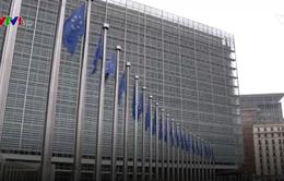 EU chưa thống nhất về chất gây rối loạn nội tiết