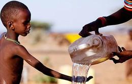 Dịch tả tại CH Chad khiến hơn 50 người tử vong