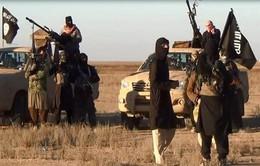 Châu Phi đứng trước mối đe dọa hiện hữu từ IS