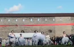 Cuộc thi chạy giành nhẫn kim cương của các cô dâu Estonia