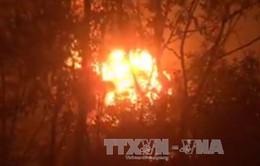 Đồng Nai: Cháy nổ lớn tại xưởng tái chế dầu nhớt thải, lửa lan ra khu rừng tràm