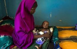 1,4 triệu trẻ em Somalia đối mặt với nạn đói