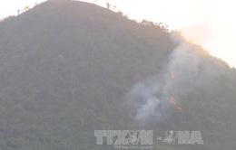 Khoảng 13 ha rừng thuộc Vườn Quốc gia Tam Đảo bị cháy