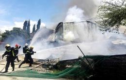 Cháy nhà máy chế biến bã mía ở Ninh Thuận