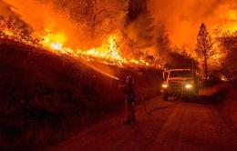 Cháy rừng tiếp tục lan rộng ở California, Mỹ