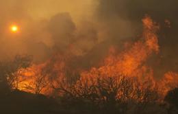 Mỹ: California vắng khách du lịch vì cháy rừng