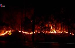 Thương vong kỷ lục do cháy rừng tại Mỹ