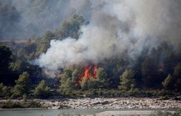 Cháy rừng diện rộng tại miền Nam nước Pháp