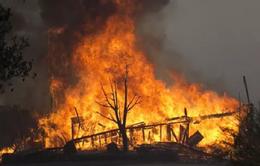 Nhiệt độ cao, nguy cơ cháy rừng ở California cực lớn